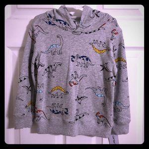 Boys dinosaur hoodie